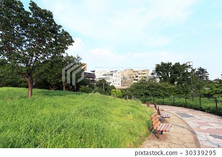Saigo Mountain Park 30339295
