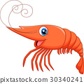 Cute shrimp cartoon 30340241