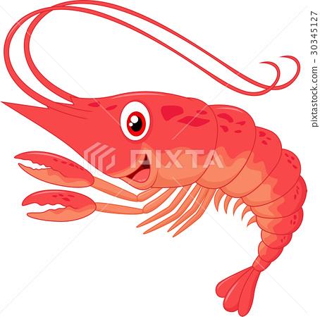 Cute shrimp cartoon 30345127