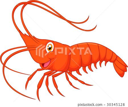 Cute cartoon shrimp 30345128