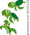 乌龟 卡通 矢量 30345130