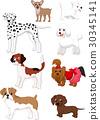 Cartoon dog collection 30345141
