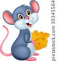 mouse rat cartoon 30345564