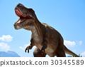 Tyrannosaurus Rex 30345589