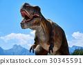 Tyrannosaurus Rex 30345591