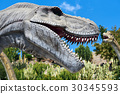 Tyrannosaurus Rex 30345593