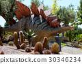 Stegosaurus 30346234