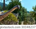 Amphicoelias 30346237