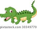crocodile, alligator, animal 30349770