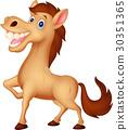 Happy horse cartoon 30351365