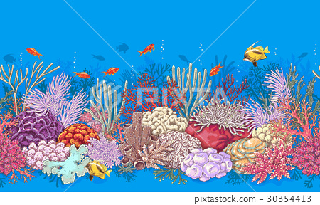 Coral Reef and Fishes Pattern 30354413