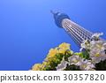 skytree tower, tokyo sky tree, sky tree 30357820