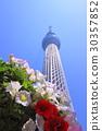 skytree tower, tokyo sky tree, sky tree 30357852