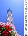 skytree tower, tokyo sky tree, nippon 30357854