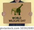 World Wildlife Day Animal Species Environmental 30362680