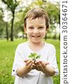 garden, gardening, green 30364671