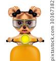 cute, dog, yorkie 30367382