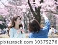 벚꽃 꽃놀이 여성 라이프 스타일 왕 벚나무 30375276