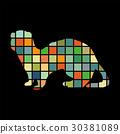 Ferret weasel ermine mammal color silhouette 30381089