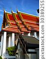 bangkok   temple  thailand abstract  plant 30389255