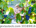 Happy blond kid boy with ripe blue grapes 30389816