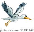 Stork Cartoon Bird 30393142