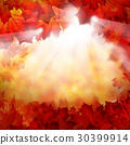 Autumn Background with Fall Leaves 30399914