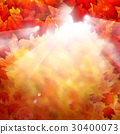 Autumn Fall Background with Red Maple Leaves 30400073