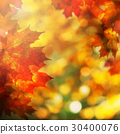 Autumn Background with Maple Leaves. Fall Border 30400076