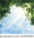 Christmas Background. Green Xmas Tree Twig 30400084