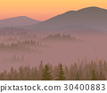 Illustration of valley with coniferous wood. 30400883