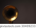Old trumpet on a dark background 30409233