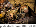 Still life with a human skull with old treasure  30409838