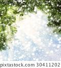 Christmas Background with Christmas Tree Twig 30411202