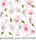 Beautiful alstroemeria on seamless background 30415406