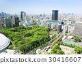 City View, cityscape, tokyo 30416607