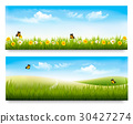 Two spring meadow banners with grass  30427274
