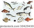 fish, and, shellfish 30429430