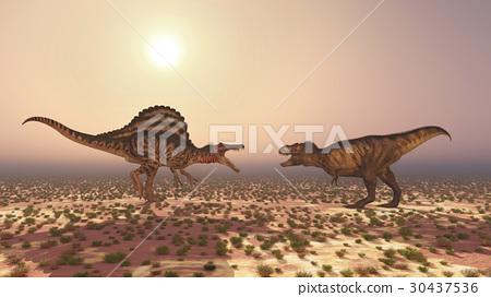 Spinosaurus and Tyrannosaurus Rex 30437536