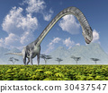 dinosaur, omeisaurus, illustration 30437547