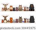 動物 划船 排 30445975