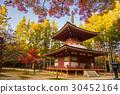 고야산, 단풍, 와카야마 30452164