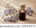 lavender, essential, flower 30459473