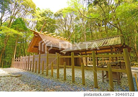 Ise shrine 30460522