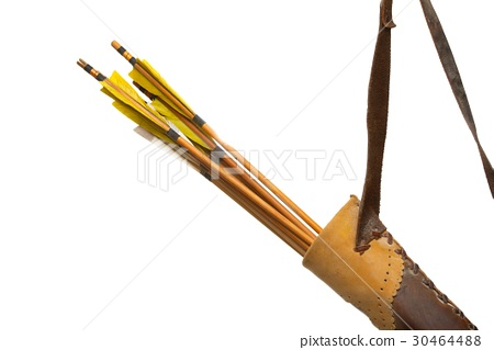 Quiver with arrows 30464488
