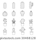 different, cactuses, icon 30468128