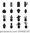 different, cactuses, icon 30468195