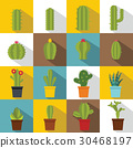 different, cactuses, icon 30468197