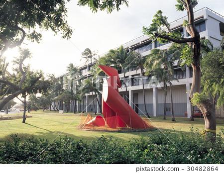 하와이대학교,하와이,미국 30482864