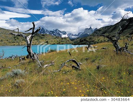 토레스델파이네국립공원,파타고니아,칠레 30483664